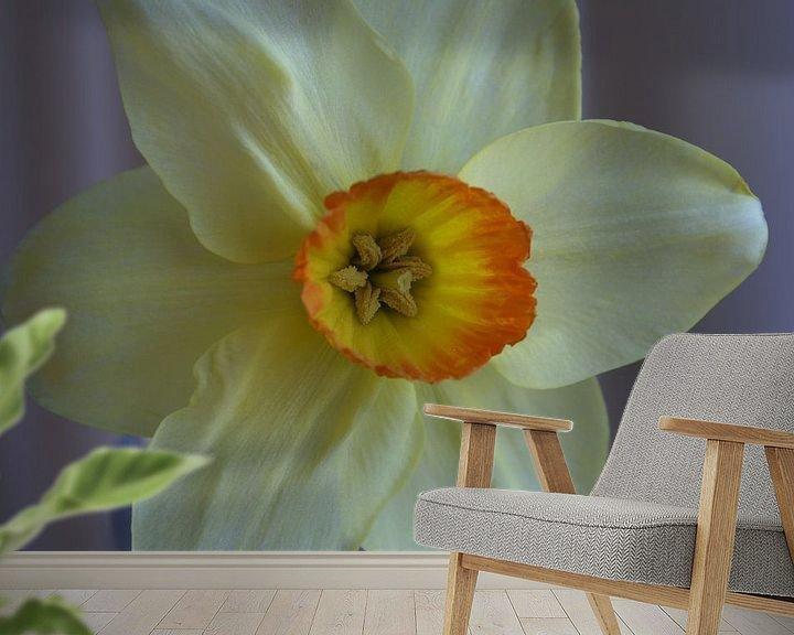 Sfeerimpressie behang: De Narcis. van Bas Smit