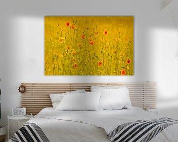 Feld mit Mohnblumen von Mieneke Andeweg-van Rijn
