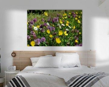 Fiori tricolori: geel, paars en wit van Frans Blok