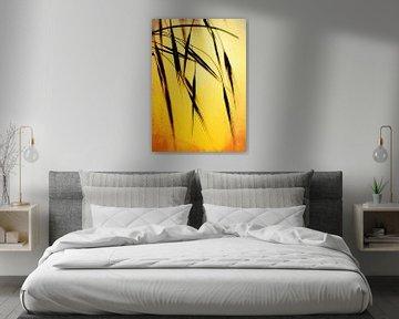 Grass in the evening sunlight von Roswitha Lorz