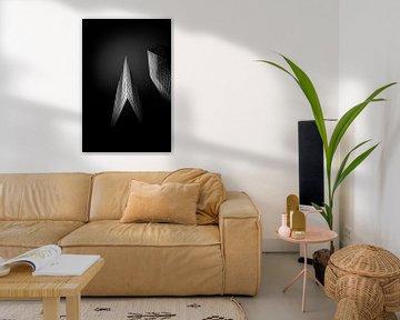 Edges of luminosity von Igwe Aneke