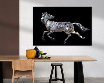 Galopperend paard van Jolanta Mayerberg
