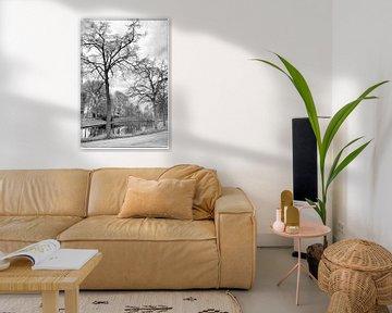 Highly Defined Trees van Robert Kersbergen