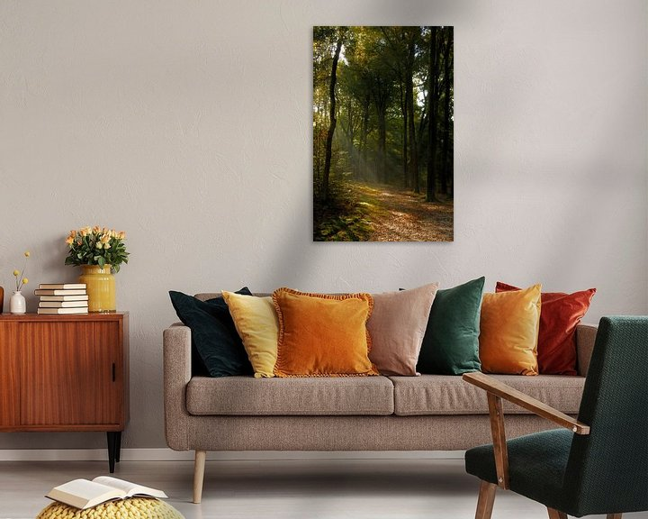 Sfeerimpressie: Herfststralen van Yorda Cornelissen