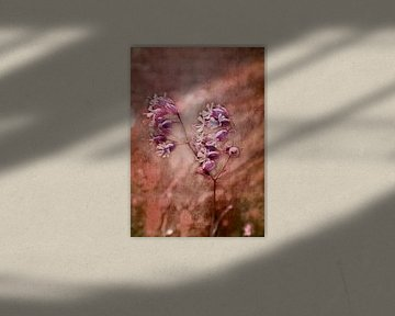Wildblume van Roswitha Lorz