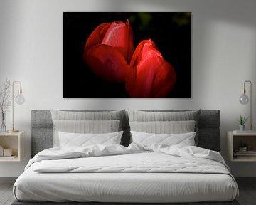rode tulpen van Jan Gerrit Deelen