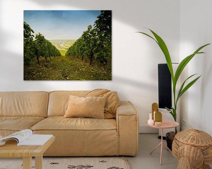 Impression: Vineyards of Sonneberg (DE) sur noeky1980 photography