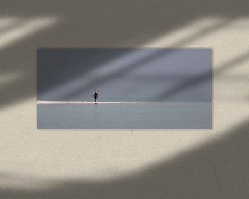 eenzame wandelaar van Jan Gerrit Deelen