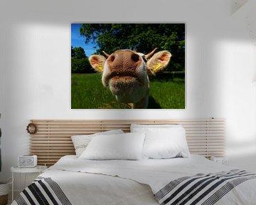 Nieuwsgierige koe van Jessica Berendsen