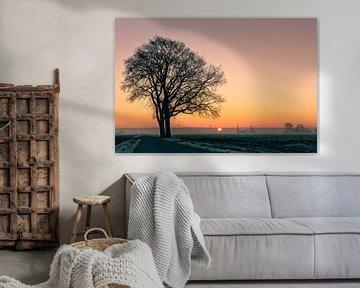 Hollands landschap in de winter