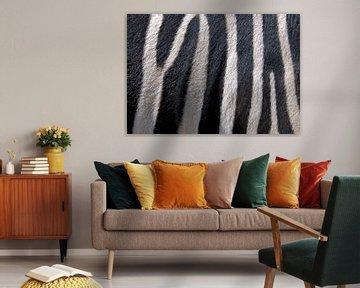 Zebra van Artstudio1622