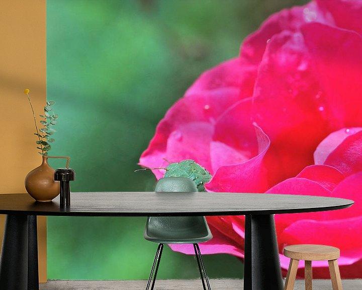 Sfeerimpressie behang: Groene Wants op felroze roos van Artelier Gerdah