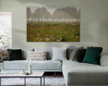 Holländische Landschaft sur Sanne Willemsen