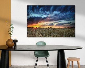 Zonsondergang in het koren van Peter Vruggink