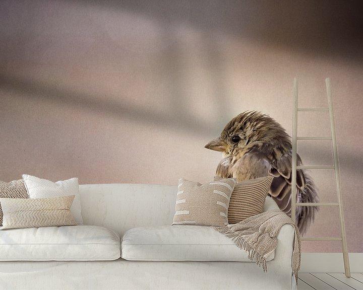 Beispiel fototapete: Federbällchen von Daniela Beyer