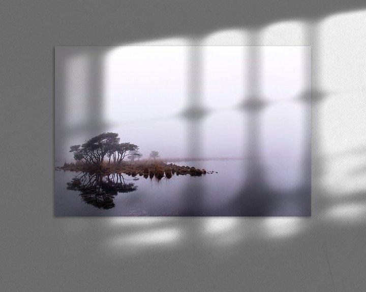 Beispiel: Spiegeling in de mist, Strijbeek, Strijbeekse heide, Noord-Brabant, Holland, afbeelding mist von Ad Huijben