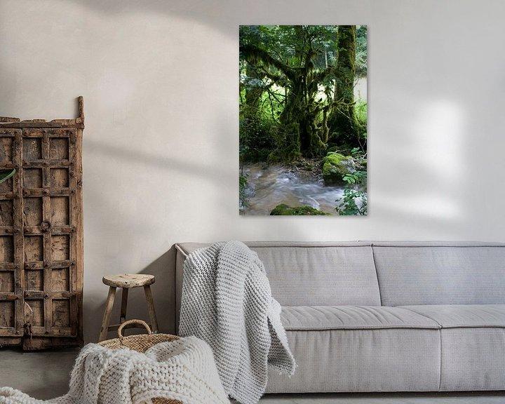 Sfeerimpressie: De Tovenaarsboom van Bas Smit