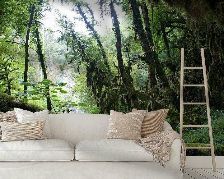 Sfeerimpressie behang: Regenwoud van Bas Smit