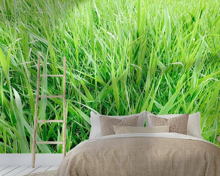 Sfeerimpressie behang: Groen als gras!  van Wiljo van Essen