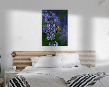Lavendel mit Biene van Roswitha Lorz