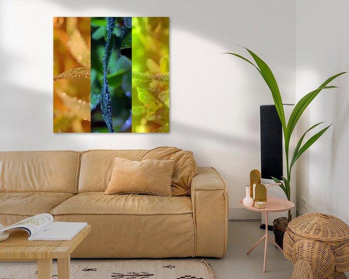 Sfeerimpressie: Triptyque végétal van Martine Affre Eisenlohr