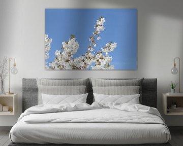 Japanische Blüte