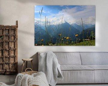 Alpenweide sur FotovanHenk