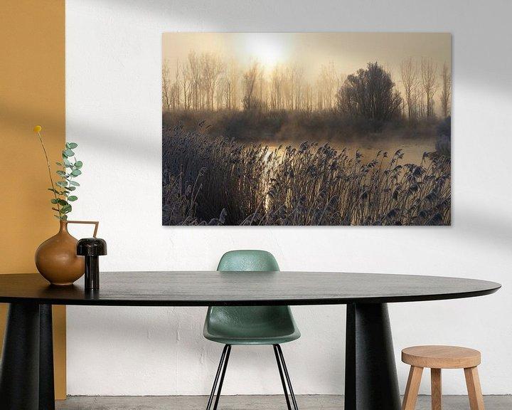 Sfeerimpressie: Biesbosch van Michel van Kooten