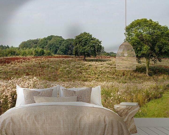 Sfeerimpressie behang: Heide landschap in Zuid - Limburg van John Kreukniet