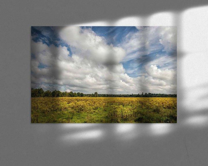 Sfeerimpressie: Natuurpark  het Dal van de Roode Beek van John Kreukniet