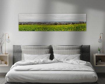 Panorama Simpelveld sur John Kreukniet