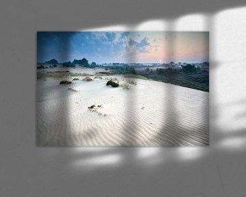 Nature texture van Olha Rohulya