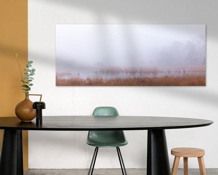 Beispiel: Rust in het oneindige, Strijbeek, Strijbeekse heide, Noord-Brabant, Holland, Nederland afbeelding mi von Ad Huijben
