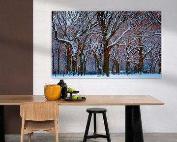 New York's Central Park na een flinke sneeuwbui van Koen Hoekemeijer