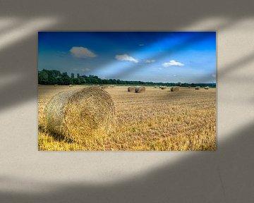 #Strorollen op akker verandert het landschap van Fotografie Arthur van Leeuwen