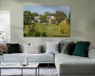 Dorpje Eyserheide in Zuid - Limburg van John Kreukniet