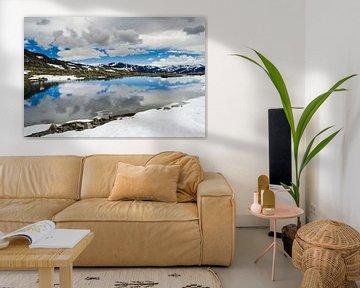 Spiegelung im Schmelzwasser - Norwegen von Ricardo Bouman