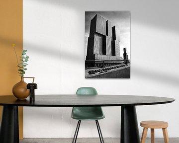 De Rotterdam van Maurice Moeliker