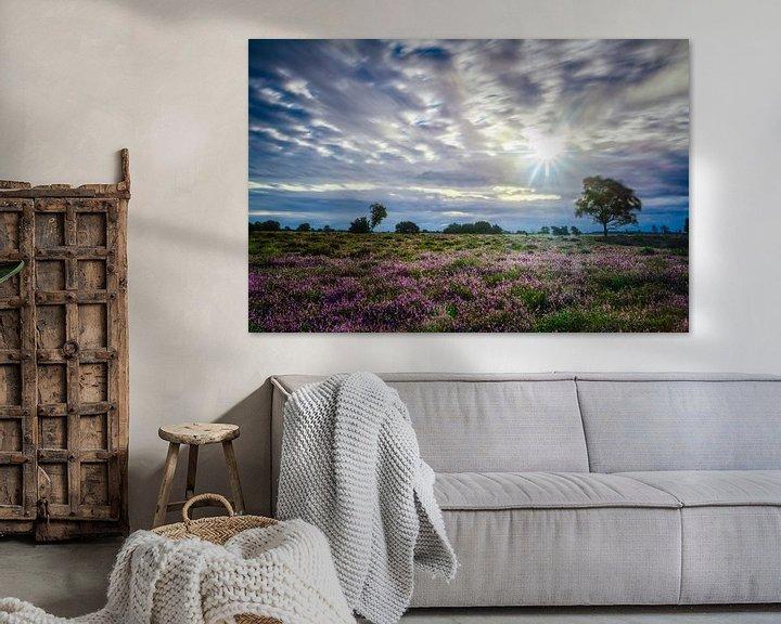 Sfeerimpressie: Zonnester van Richard Guijt Photography