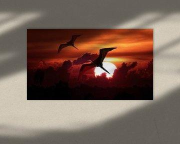 Fregat vogels tegen ondergaande zon von Loraine van der Sande