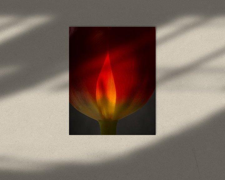 Sfeerimpressie: Tulp in vuur en vlam 45 van Herman van Ommen