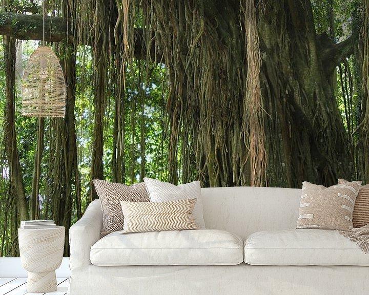 Sfeerimpressie behang: Banyan boom met lianen van Inge Hogenbijl