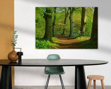 Wald sur Michel van Kooten