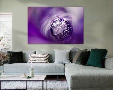 Bubbels I van Jessica Berendsen