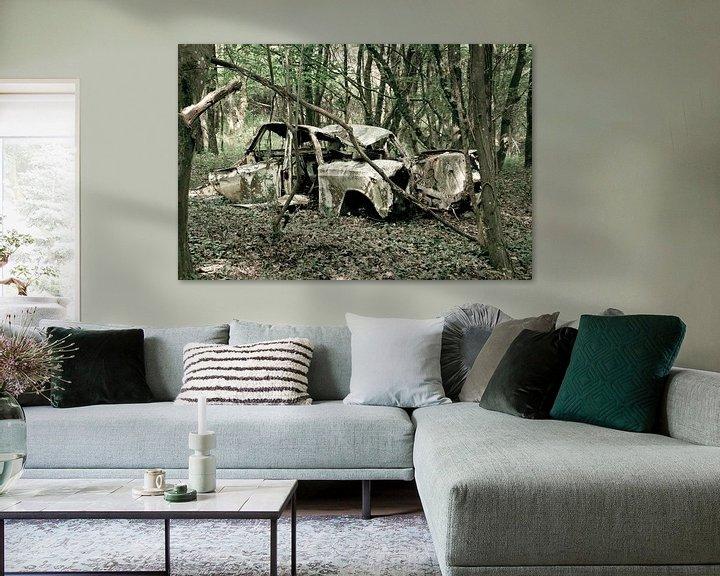 Sfeerimpressie: Auto in het bos van marleen brauers