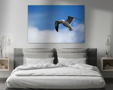 Seagull sur Erwin Verweij
