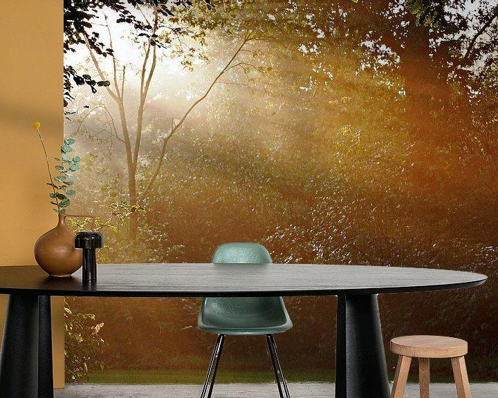 Sfeerimpressie behang: de eerste zonnestralen van Yvonne Blokland
