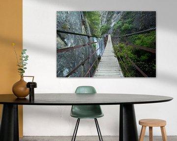 The Walking Bridge van Cornelis (Cees) Cornelissen