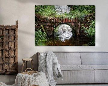 Tunnel over Sloot van Dennis Timmer