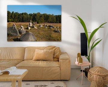 luneburger heide stenen van Groothuizen Foto Art